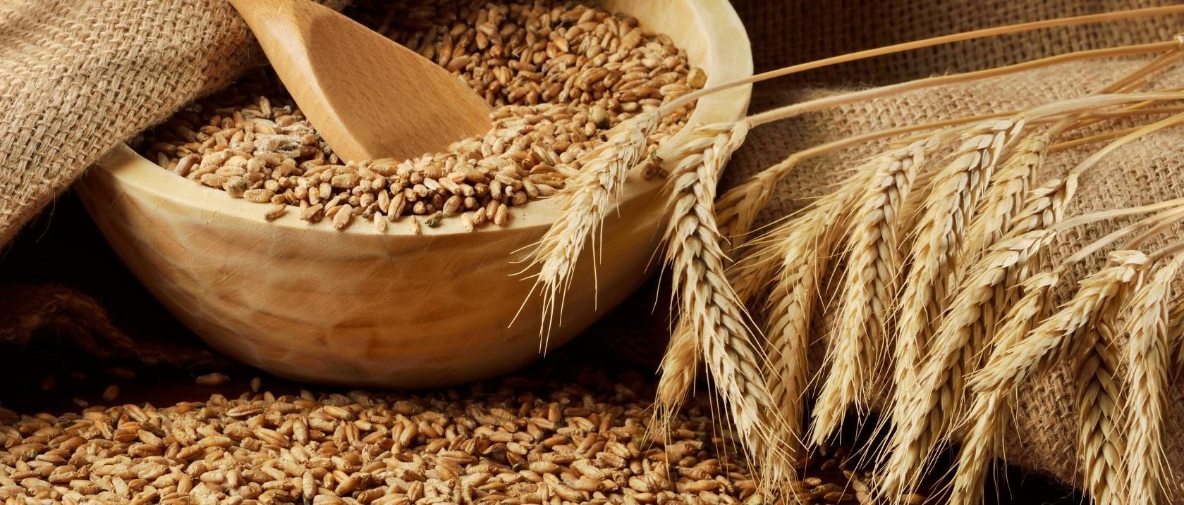 Сушим зерно